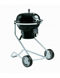 Barbecue Charbon Rosle Air F50 + Tablette Bois