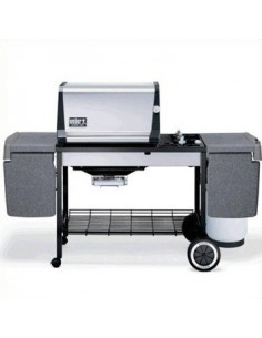 Barbecue Genesis Gold B