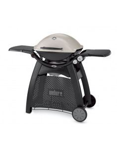 Barbecue Q3000