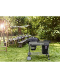 Barbecue Weber Performer Deluxe 57cm GBS