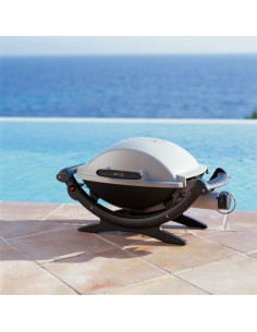 Barbecue gaz q100 Weber*