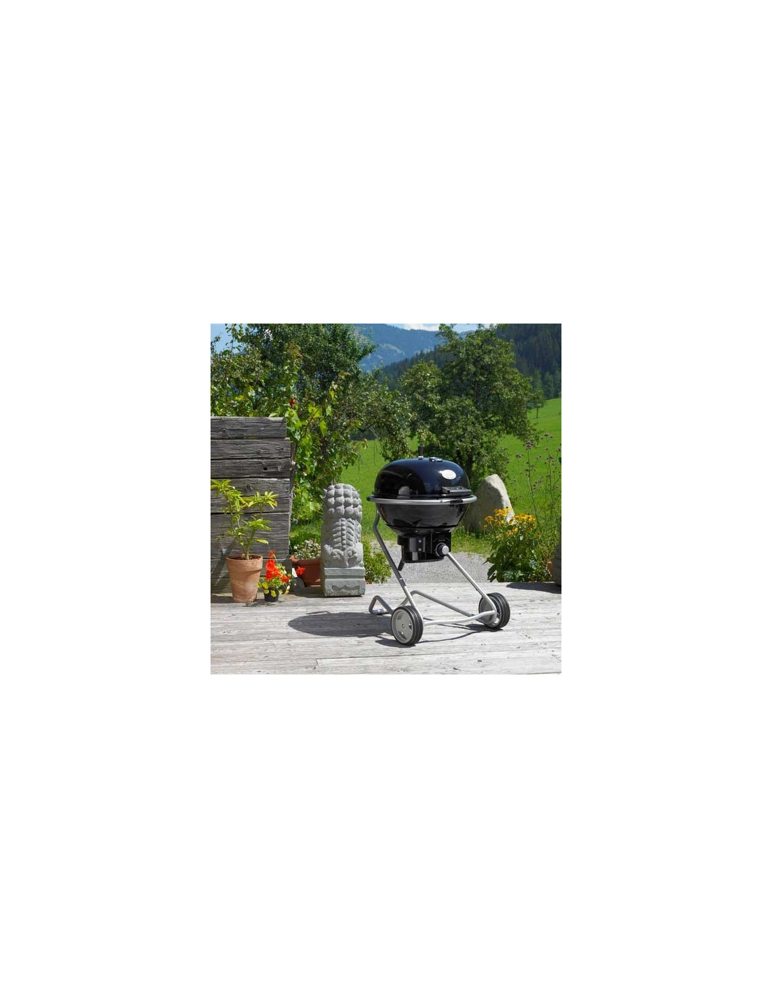 Barbecue Rosle Air F60 Charbon