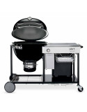 Summit Charcoal Grilling Center