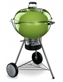 Pack Barbecue Mastertouch Vert + Tablette bois
