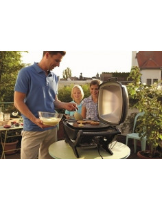 Barbecue Weber Q240 gris anthracite