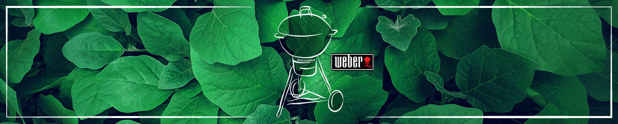 Barbecue Weber - Esprit Barbecue