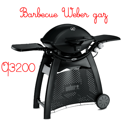 barbecue weber gaz q3200